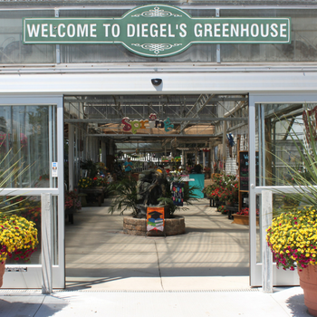 about Diegel's Greenhouse